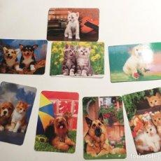 Coleccionismo Calendarios: 8 CALENDARIOS FOTOS DE ANIMALES, PUBLICIDAD CENTRO VETERINARIO . AÑOS 2005-2009-2010-2012. Lote 221811751