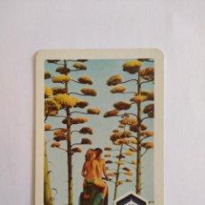 Coleccionismo Calendarios: CALENDARIO FOURNIER AÑO 1977 MOTO VESPA S.A. Lote 222121142