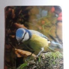 Collezionismo Calendari: -77623 CALENDARIO PAJAROS, AÑO 1987, ANIMALES, AVES, PUBLICITARIO EXTRANJERO. Lote 222917778
