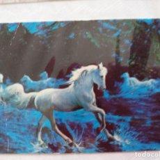 Coleccionismo Calendarios: LOTE DE 10 CALENDARIOS DE ANIMALES 1975, 1977, 1979, 1982, 1985, 1995,2004, 2006. Lote 239612155