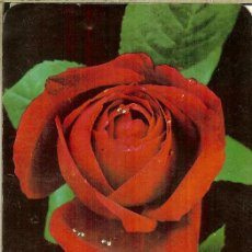 Coleccionismo Calendarios: CALENDARIO DE SERIE - 1972 - GRAY - 427 - PUBLICIDAD DE ZARAGOZA. Lote 245739550