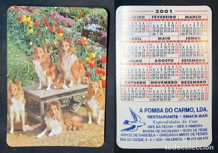 FAUNA - CALENDARIO EDITADO EN PORTUGAL - AÑO 2001 (Coleccionismo - Calendarios)