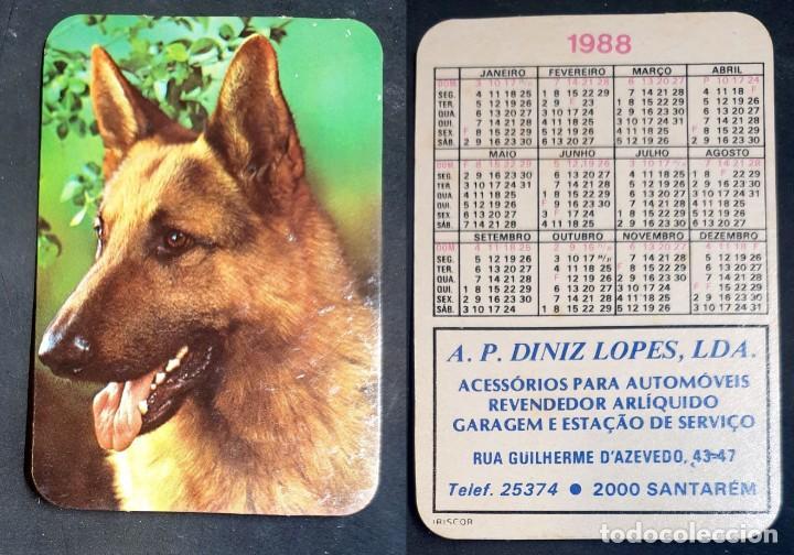 FAUNA - CALENDARIO EDITADO EN PORTUGAL - AÑO 1988 (Coleccionismo - Calendarios)