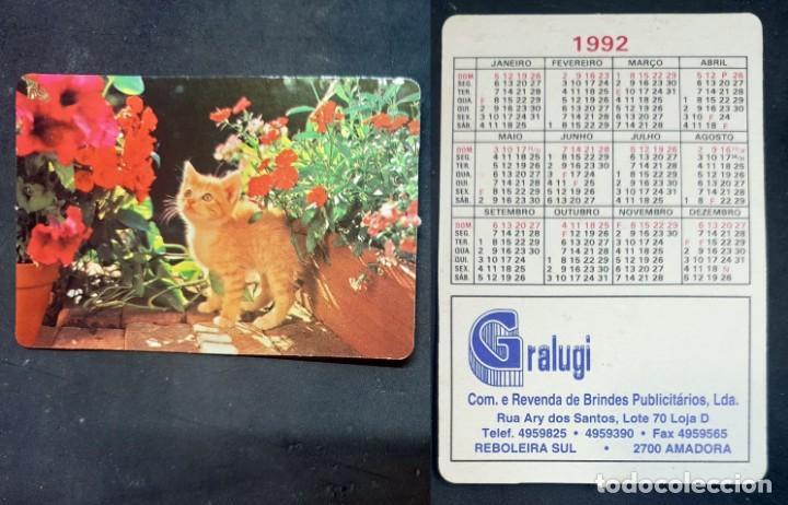 FAUNA - CALENDARIO EDITADO EN PORTUGAL - AÑO 1993 (Coleccionismo - Calendarios)