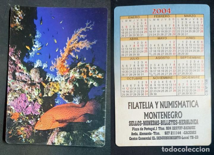 FAUNA - CALENDARIO EDITADO EN ESPAÑA - AÑO 2004 (Coleccionismo - Calendarios)