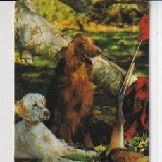 Coleccionismo Calendarios: CALENDARIO DE PERROS DE CAZA AÑO 2001 SINPUBLICIDAD DE LA CASA EGC. Nº 95 EN ESP. Lote 269060968