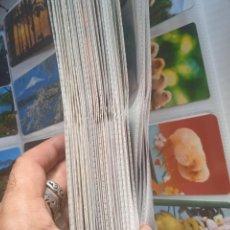 Coleccionismo Calendarios: LOTE DE 1032 CALENDARIOS DE BOLSILLO. Lote 279468898