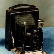 Cámara de fotos: CAMEO DE FUELLE . Lote 1825294