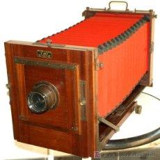 Cámara de fotos: CAMARA PROFESIONAL DE ESTUDIO C1900 DE FUELLE ROJO. Lote 110345702