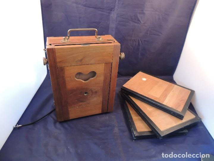 Cámara de fotos: CAMARA DE FOTOS DE FUELLE Y CAJA NOGAL LUMINOR CIRCA 1910 - Foto 6 - 104720635