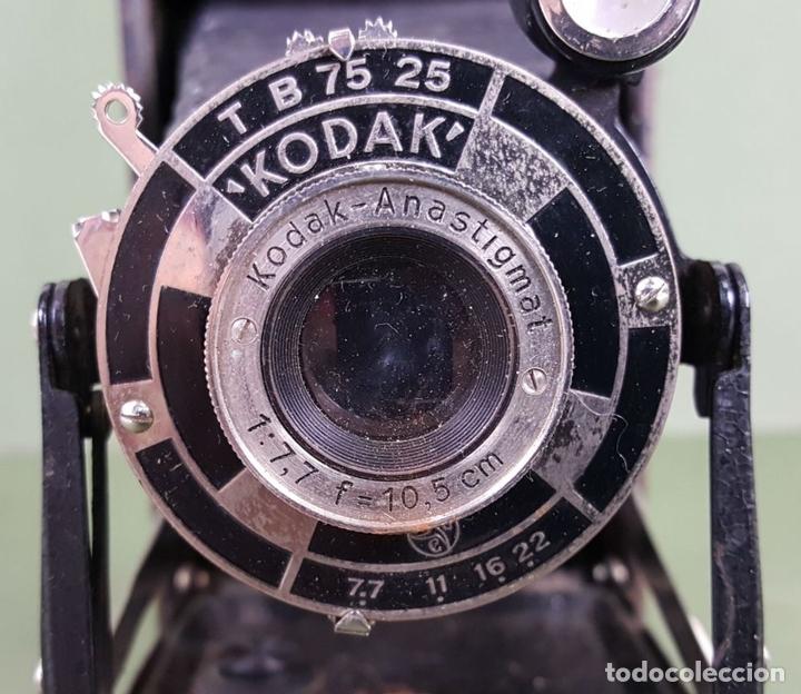 Cámara de fotos: CÁMARA FOTOGRÁFICA DE FUELLE KODAK. STUTTGART. ALEMANIA. CIRCA 1915. - Foto 6 - 127993719