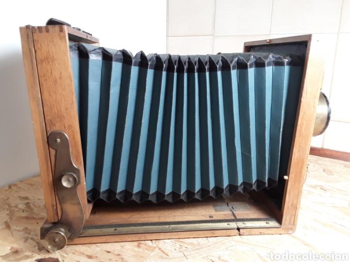 Cámara de fotos: Cámara de fuelle de madera año 1900 - Foto 5 - 142593928