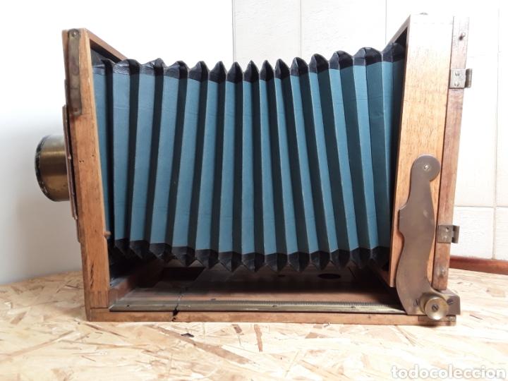 Cámara de fotos: Cámara de fuelle de madera año 1900 - Foto 7 - 142593928