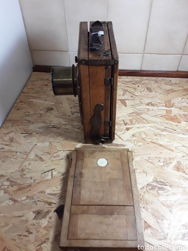 Cámara de fotos: Cámara de fuelle de madera año 1900 - Foto 10 - 142593928