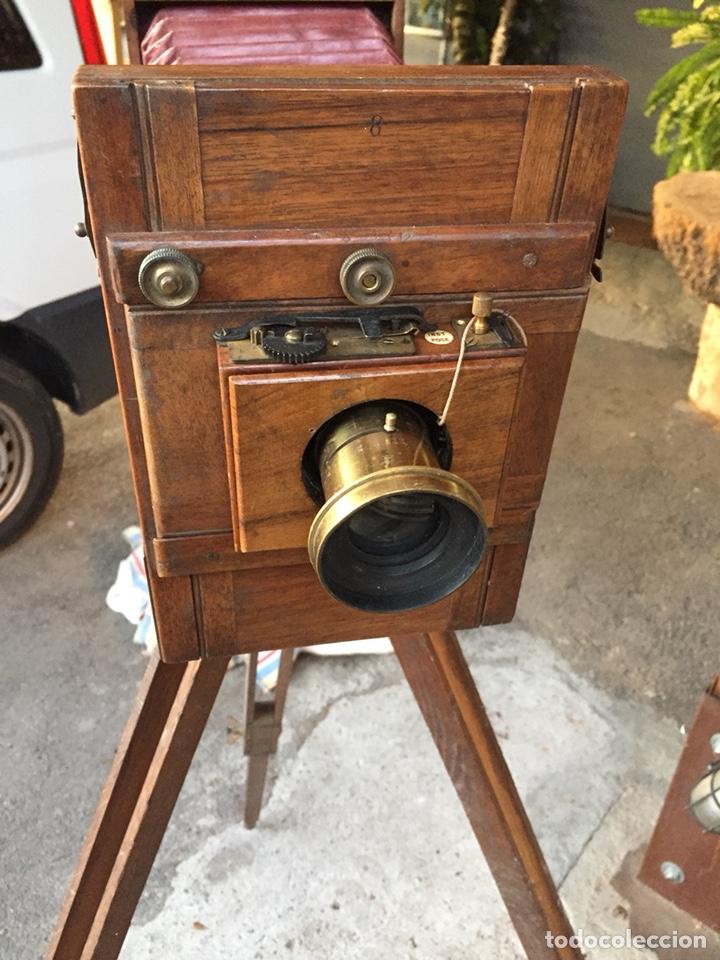 Cámara de fotos: Antigua cámara de fuelle - Foto 3 - 144649249