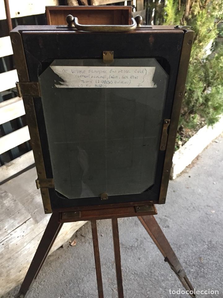 Cámara de fotos: Antigua cámara de fuelle - Foto 4 - 144649249