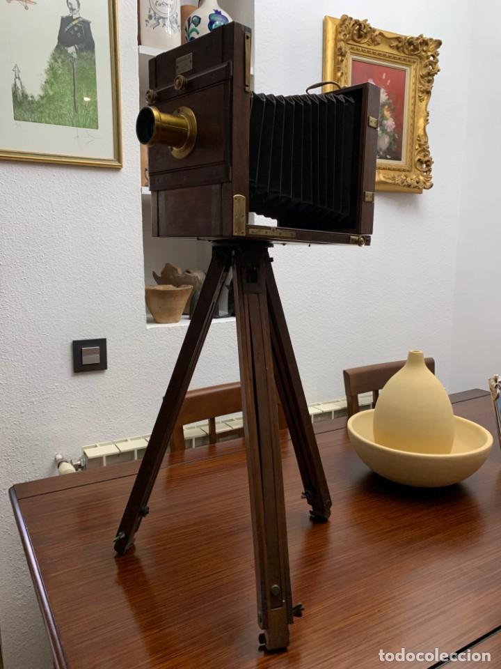 Cámara de fotos: MARION FILS CAMARA DE MADERA CON FUELLE 2 CHASIS 13x18 - Foto 9 - 169150528