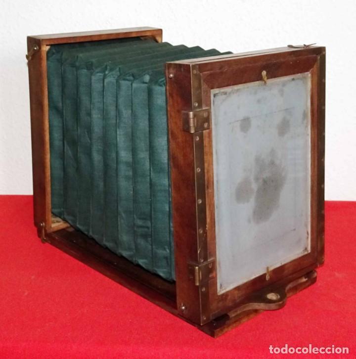 Cámara de fotos: Cámara de estudio J. GARCIN, c1900, fuelle verde - Foto 8 - 262514740