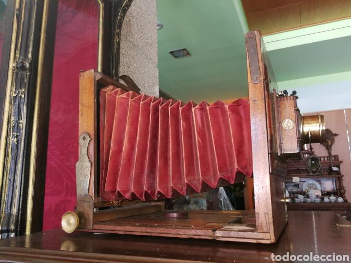 Cámara de fotos: CÁMARA DE MADERA DE FUELLE - Foto 10 - 175207678