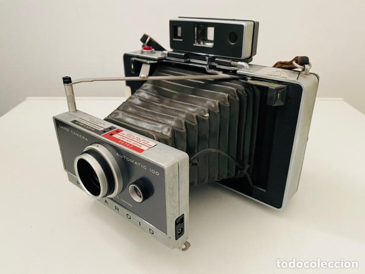 Cámara de fotos: Polaroid Automatic 100 - Foto 6 - 245218320
