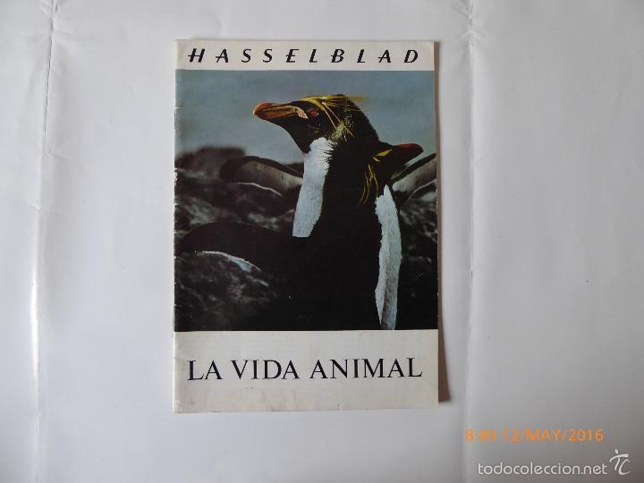 HASSELBLAD. FOLLETO,EN ESPAÑOL (Cámaras Fotográficas - Catálogos, Manuales y Publicidad)