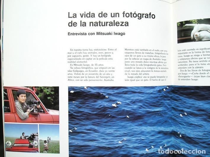Cámara de fotos: Olympus VisionAge nº 6 (1986) - Foto 10 - 62890968