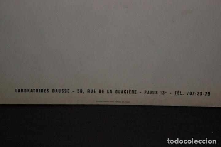 Cámara de fotos: Publicidad Solurutine - 18 imágenes impresas sobre cartón de Mexico- Miden 43X23 cm - Foto 26 - 72407287