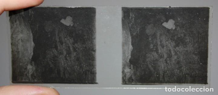 Cámara de fotos: UNIS FRANCE, PARIS (Ca.1900) VISOR DE MANO ESTEREOSCOPICO EN BAQUELITA CON 16 CRISTALES - Foto 9 - 166154474