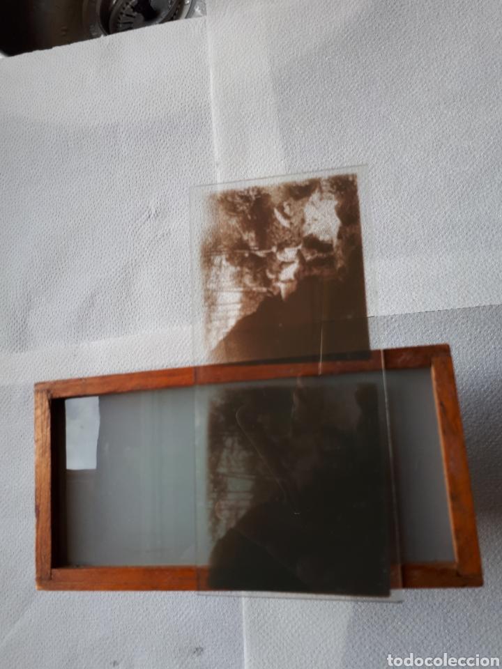 Cámara de fotos: Antigua Esteroscopia o Visor cristal de ( 60x113) m/m - Foto 2 - 182850968