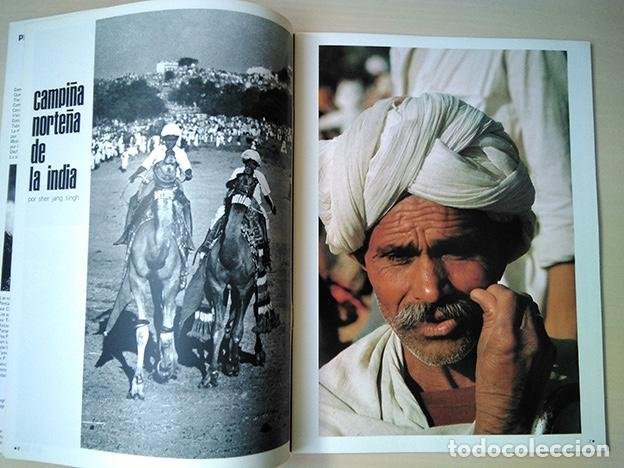 Cámara de fotos: Pentax Family 12. Portada Helmut Newton. Sher Jang Singh, Trevern Dawes… 1977 - Foto 4 - 184586190