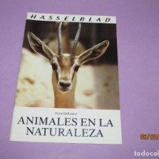 Cámara de fotos: ANTIGUO CATÁLOGO MANUAL DE FOTOGRAFIA ANIMALES EN LA NATURALEZA DE HASSELBLAD DEL AÑO 1981.. Lote 214008767