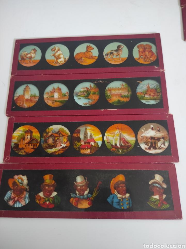 Cámara de fotos: Gran lote de linterna mágica GBN con 39 cristales. Circa 1890 - Foto 13 - 276169413