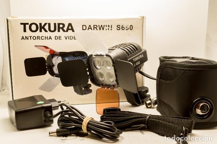 ANTORCHA LED PROFESIONAL TOKURA DARWIN S-650 (Cámaras Fotográficas - Réflex (autofoco))