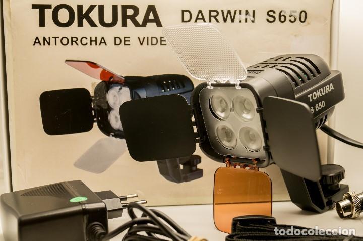 Cámara de fotos: ANTORCHA LED PROFESIONAL TOKURA DARWIN S-650 - Foto 17 - 131153344