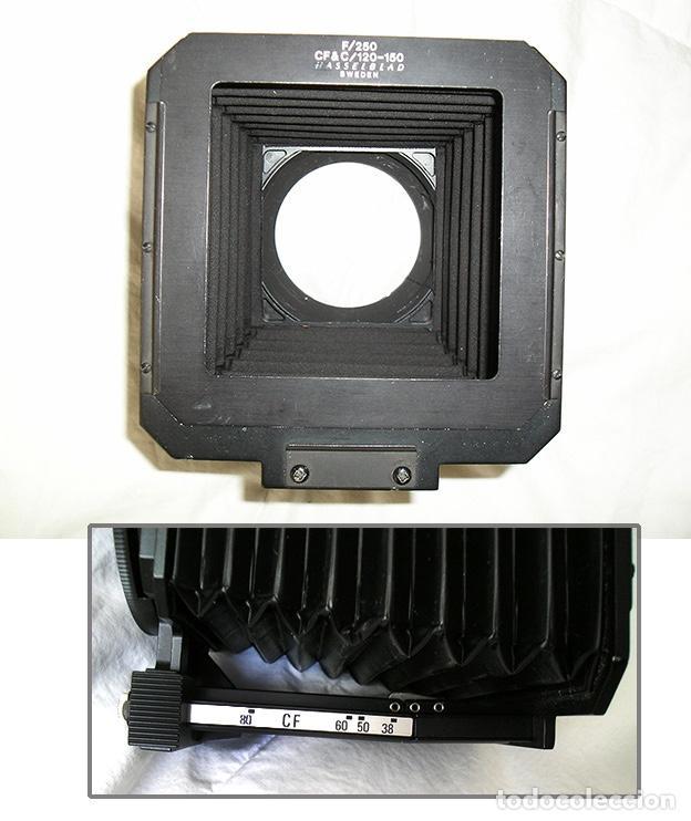 Cámara de fotos: Hasselblad 500C + Hasselblad EL/M + Planar 80 mm + Distagon 50mm + Sonnar 150 mm + otros - Foto 7 - 166119562