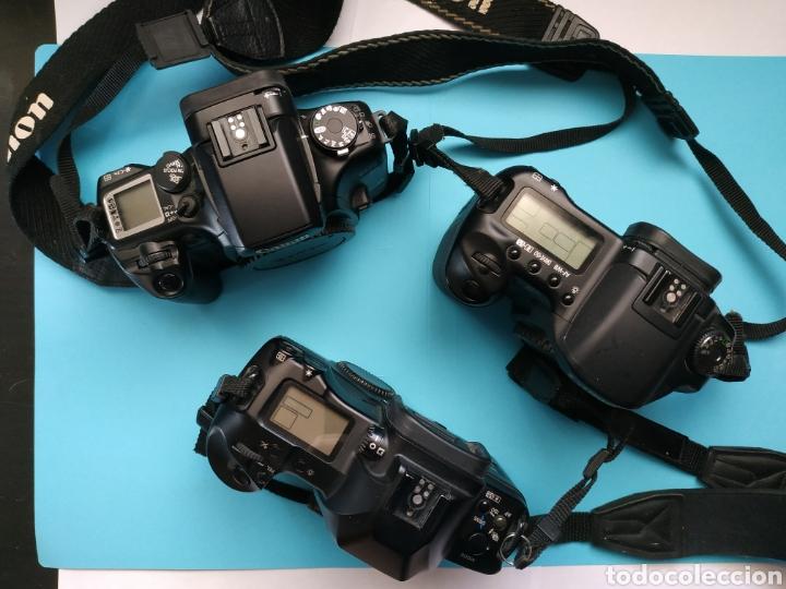 Cámara de fotos: Canon EOS 10D - Foto 3 - 222505121