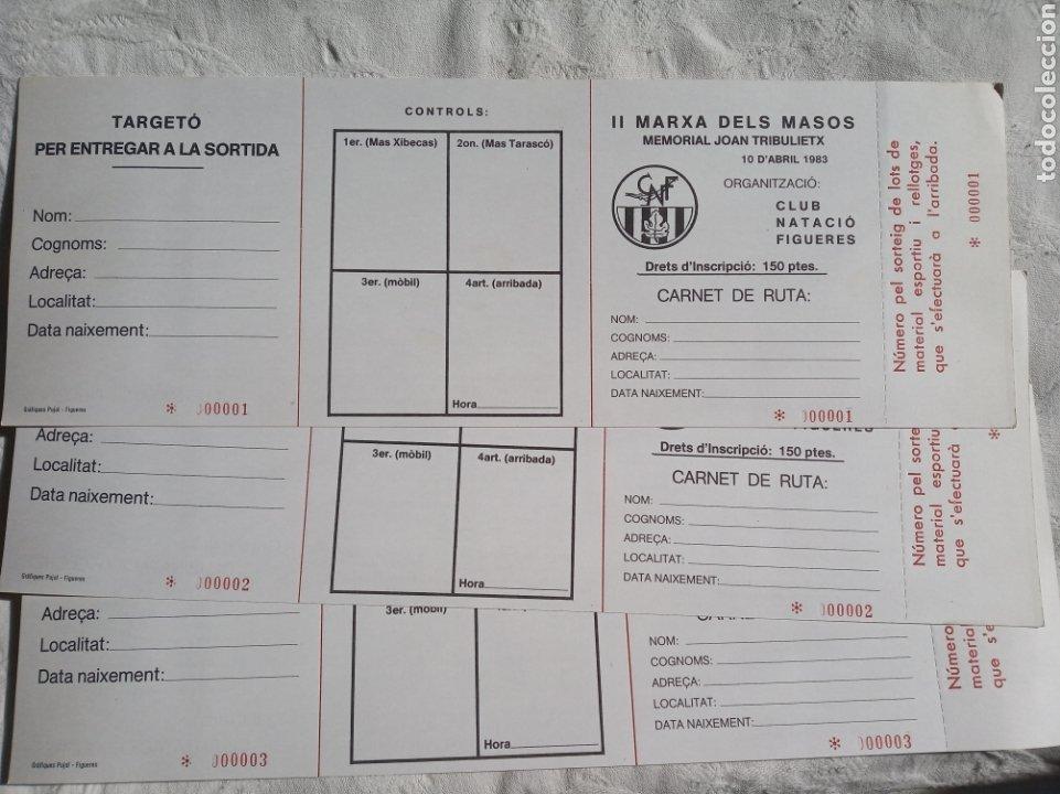 LOTE CARNETS DEPORTIVOS CLUB NATACIO FIGUERES.GIRONA.1983.MARXA DELS MASOS.ESPORT.OLIMPIC.CATALUNYA (Coleccionismo Deportivo - Documentos de Deportes - Carnet de Socios)