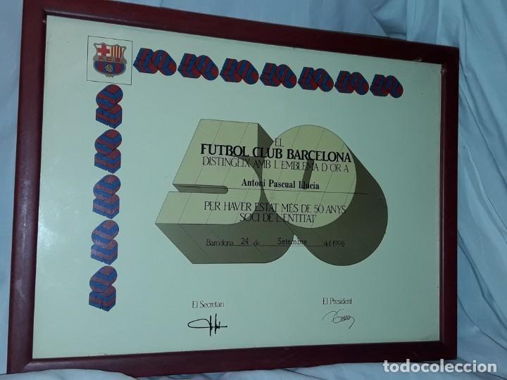Coleccionismo deportivo: Cuadro titulo honorifico 50 años socio emblema D´oro del Barça F,C, Barcelona año 1996 - Foto 2 - 222043367