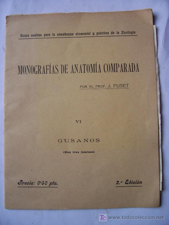 monografias de anatomia comparada, vi gusanos ( - Comprar Cartas ...