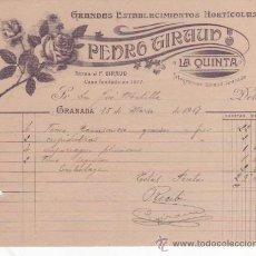 Cartas comerciales: BONITA Y ANTIGUA CARTA COMERCIAL PEDRO GIRAUD: GRANDES ESTABLECIMIENTOS HORTÍCOLAS. GRANADA 1917. Lote 37333512