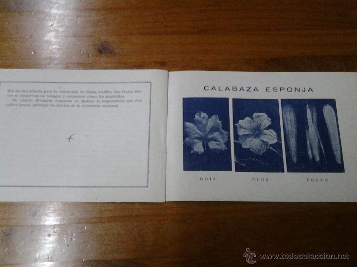 Carteles Espectáculos: AGRICULTURA CUENCA DEL SEGURA ESTACION HORTICULTURA MURCIA XXV FERIA INTERNACIONAL DE VALENCIA 1947 - Foto 2 - 44459168