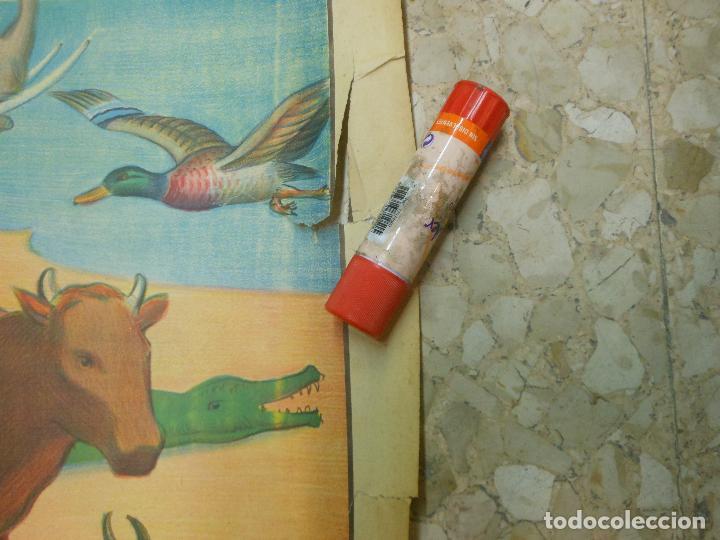 Carteles Espectáculos: GRAN CARTEL DE MAGIA THE GREAT CHANG AND FAK-HONGS UNITED MAGICIANS - THE NOE ARK EL ARCA DE NOE - Foto 2 - 35454355