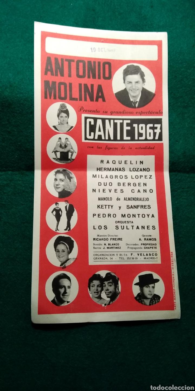 CARTEL ANTONIO MOLINA .- ESPECTACULO CANTE 1967 (Coleccionismo - Carteles Gran Formato - Carteles Circo, Magia y Espectáculos)