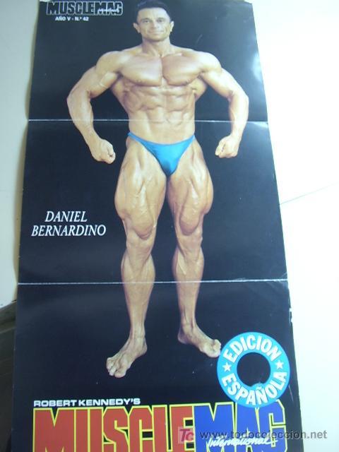 POSTER DEL CULTURISTA DANIEL BERNARDINO. REVISTA MUSCLEMAG EDICIÓN ESPAÑOLA. MEDIDAS 27,5X55CMS. UN (Coleccionismo Deportivo - Carteles otros Deportes)
