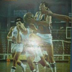 Coleccionismo deportivo: CARTEL DEPORTIVO DE BALONCESTO EN ACCION. Lote 10830241
