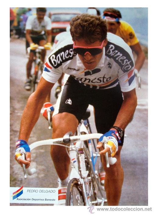 CICLISMO 1990 CARTEL POSTER. PERICO PEDRO DELGADO. BANESTO. MIDE 48 X 68 CM (Coleccionismo Deportivo - Carteles otros Deportes)