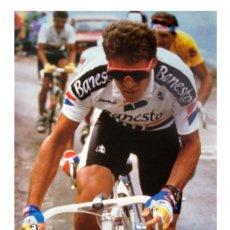 Coleccionismo deportivo: POSTER CICLISMO 1990 CARTEL. PERICO PEDRO DELGADO. BANESTO. MIDE 48 X 68 CM. Lote 27398022