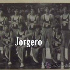 Coleccionismo deportivo: SELECCIÓN ESPAÑOLA JUNIOR MASCULINA BALONCESTO 1983. RECORTE. Lote 29098256