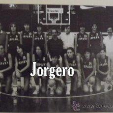 Coleccionismo deportivo: SELECCIÓN ESPAÑOLA JUNIOR FEMENINA BALONCESTO 1983. RECORTE. Lote 29098278