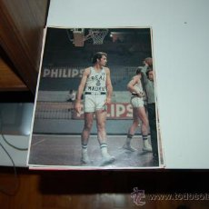 Coleccionismo deportivo: BALONCESTO ( BASKET ). REAL MADRID: MINIPÓSTER DE LUYK. 1987. Lote 31204638